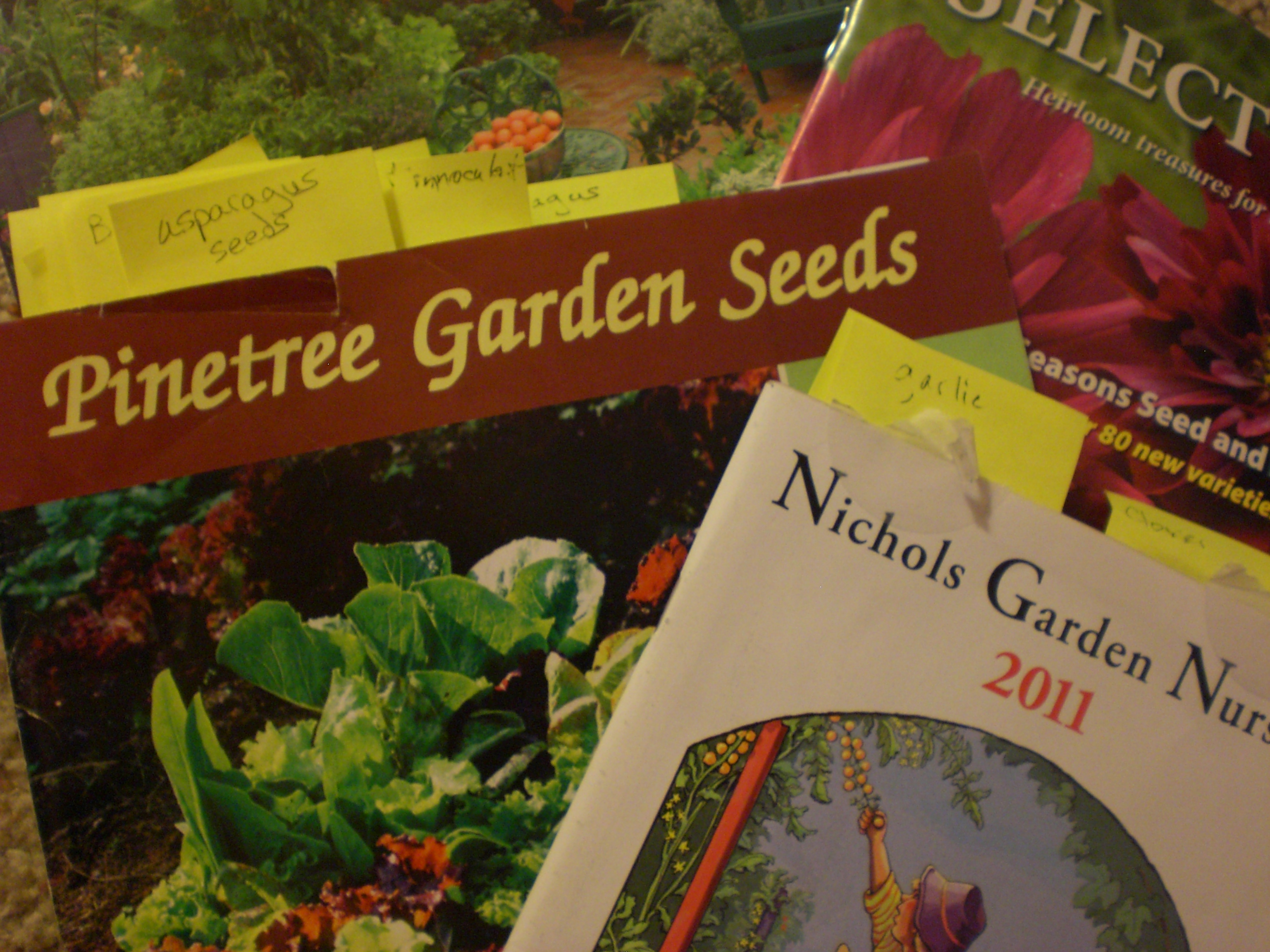 Seed Catalogues | Strawberry Fields for Breakfast