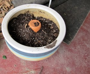 An upside-down 8 inch pot fills up space and still allows drainage.